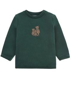 Зеленый свитшот с принтом Плюшевый мишка детский Sanetta fiftyseven