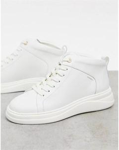 Высокие кожаные кроссовки кремового цвета Pippa Fiorelli