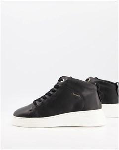 Высокие кожаные кроссовки черного цвета Pippa Fiorelli