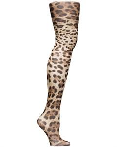 Колготки с леопардовым принтом Dolce&gabbana