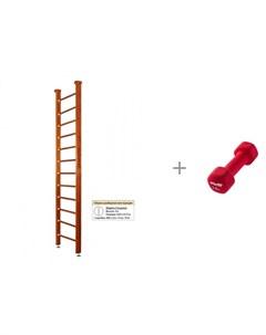 Шведская стенка Classic Ceiling и Starfit Гантель неопреновая 1 5 кг Kampfer