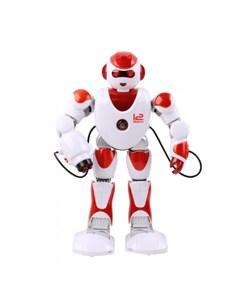 Робот Зет Альфа радиоуправляемый Zhorya