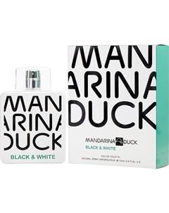 Black White Mandarina duck