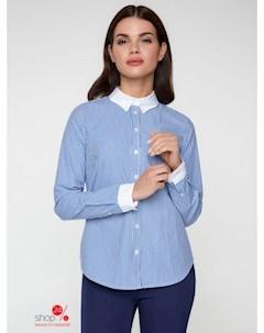 Рубашка цвет синий Bestia