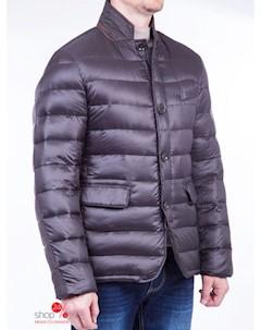 Куртка цвет темно коричневый Alfred muller