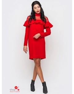 Платье цвет красный Zephyr