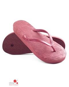Вьетнамки цвет бордовый Evars