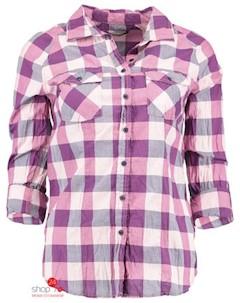Рубашка цвет розовый Haily's