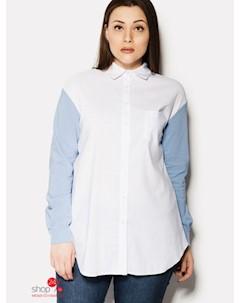 Рубашка цвет белый голубой Nomes