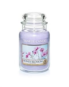 Ароматическая свеча большая Цветочный мед 623 г Yankee candle