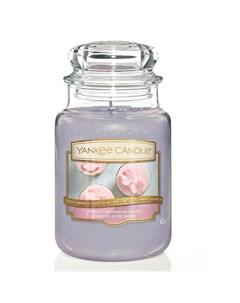 Аромасвеча Утренняя роза 16 8 см Yankee candle