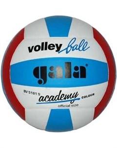 Мяч волейбольный Academy BV5181S размер 5 цвет бело сине красный Gala