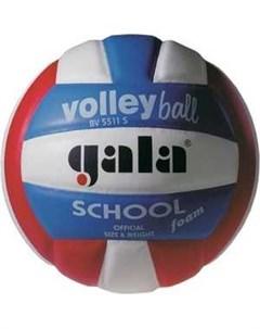 Мяч волейбольный School Foam Colour BV5511S размер 5 цвет бел красн син Gala