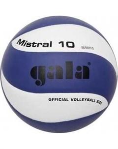 Мяч волейбольный Mistral 10 арт BV5661S р 5 бело синий Gala