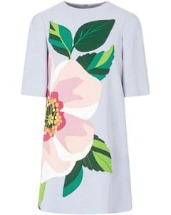 Платье мини с цветочной аппликацией Dolce&gabbana