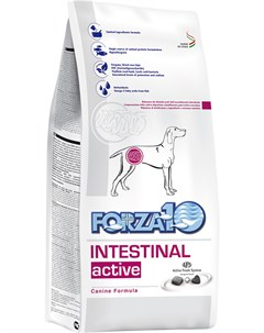 Dog Intestinal Active для взрослых собак всех пород при заболеваниях желудочно кишечного тракта 4 4  Forza10