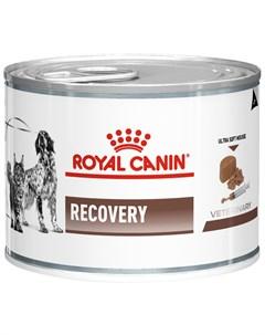 Recovery для собак и кошек в период выздоровления 195 гр 195 гр х 12 шт Royal canin