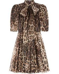 Платье с леопардовым принтом и бантом Dolce&gabbana