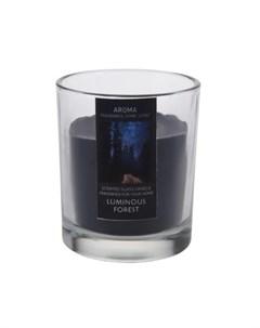 Свеча в стакане Luminous Forest 6 см Excellent houseware