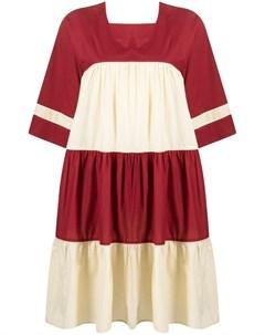 Ярусное платье Petite Paloma Ymc