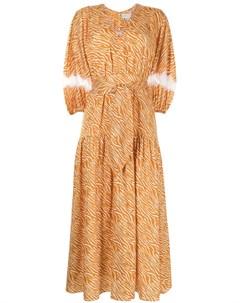 Платье Cassida с зебровым принтом Sachin & babi