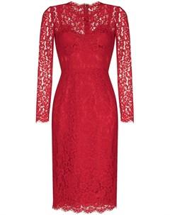 Платье миди с длинными рукавами и цветочным кружевом Dolce&gabbana