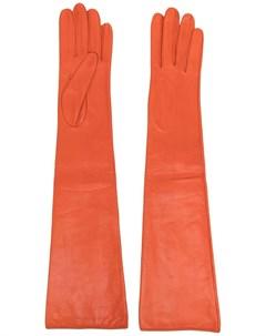 Длинные перчатки Manokhi