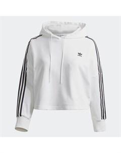 Укороченная худи Plus Size Originals Adidas
