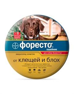 Форесто Ошейник от блох клещей и вшей для собак более 8 кг Foresto