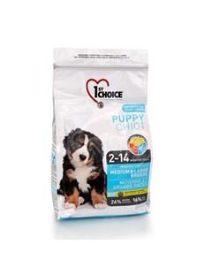 Puppy Medium Large Breeds Сухой корм для щенков средних и крупных пород с курицей 2 72 кг 1st choice