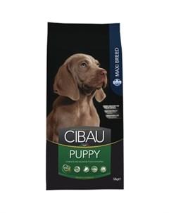 Сухой корм CIBAU Puppy Maxi для щенков крупных пород 12кг Farmina