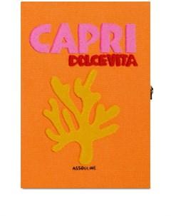 Клатч Capri в виде книги Assouline