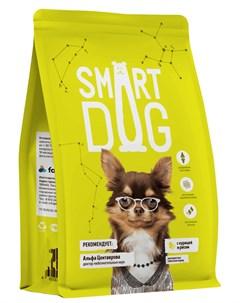 Для взрослых собак всех пород с курицей и рисом 18 кг Smart dog