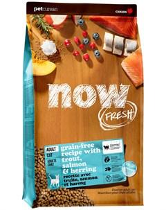 Cat Adult беззерновой для взрослых кошек с чувствительным пищеварением с форелью и лососем 7 26 7 26 Now fresh