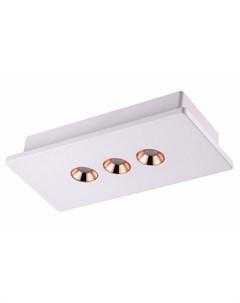 Настенно потолочный светодиодный светильник caro Novotech