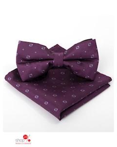 Набор галстук бабочка цвет бордовый Kaftan