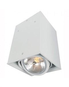 Светильник потолочный A5936PL 1WH CARDANI Arte lamp