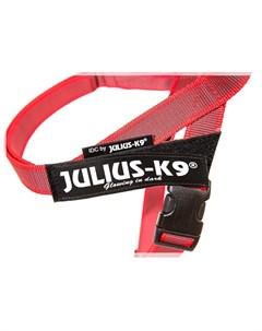 Шлейка Ремни Color Gray IDC 2 для собак 28 40кг 67 97см цвета в ассорт Julius-k9