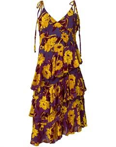 Daizy shely платье coupe Daizy shely