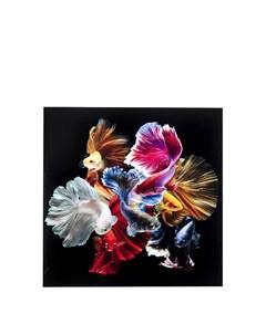 Картина Fischs 120х120х0 Kare