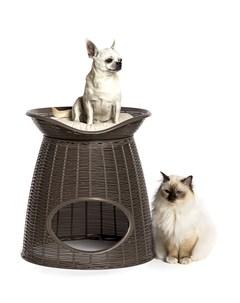 Домик для кошек PASHA 52х60х46 55h см с подушечками светло коричневый бежевый Bama pet