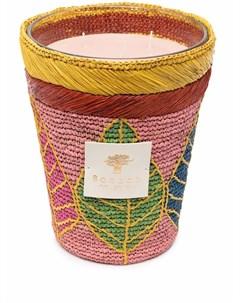 Ароматическая свеча Ravintsara Baobab collection