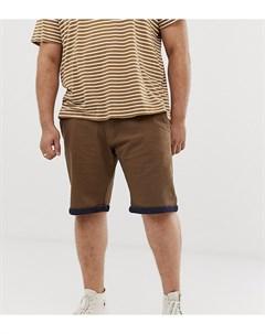 Светло коричневые шорты чиносы King Size Duke