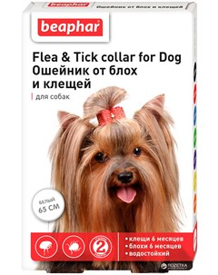 Беафар ошейник для собак против блох и клещей белый 65 см 1 шт Beaphar