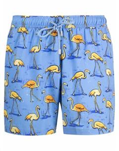 Плавки шорты с принтом Bluemint