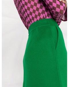 Фетровая юбка A силуэта Parosh