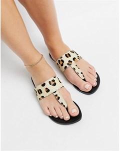 Кожаные сандалии с перемычкой между пальцами и леопардовым принтом Function Asos design
