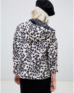Ветровка с леопардовым принтом Коричневый New look