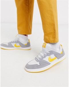 Серые кроссовки Alleyoop Nike sb