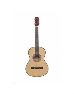 Музыкальный инструмент Акустическая Гитара TF 3802A BK Terris